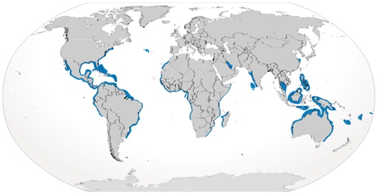 Bull Shark Habitat Map