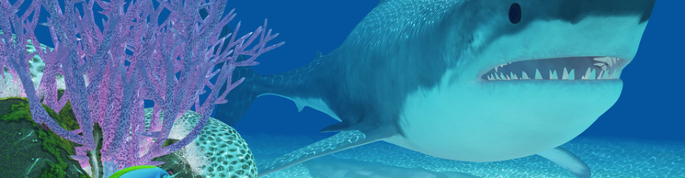 The Five Coolest Prehistoric Sharks To Ever Roam Our Oceans